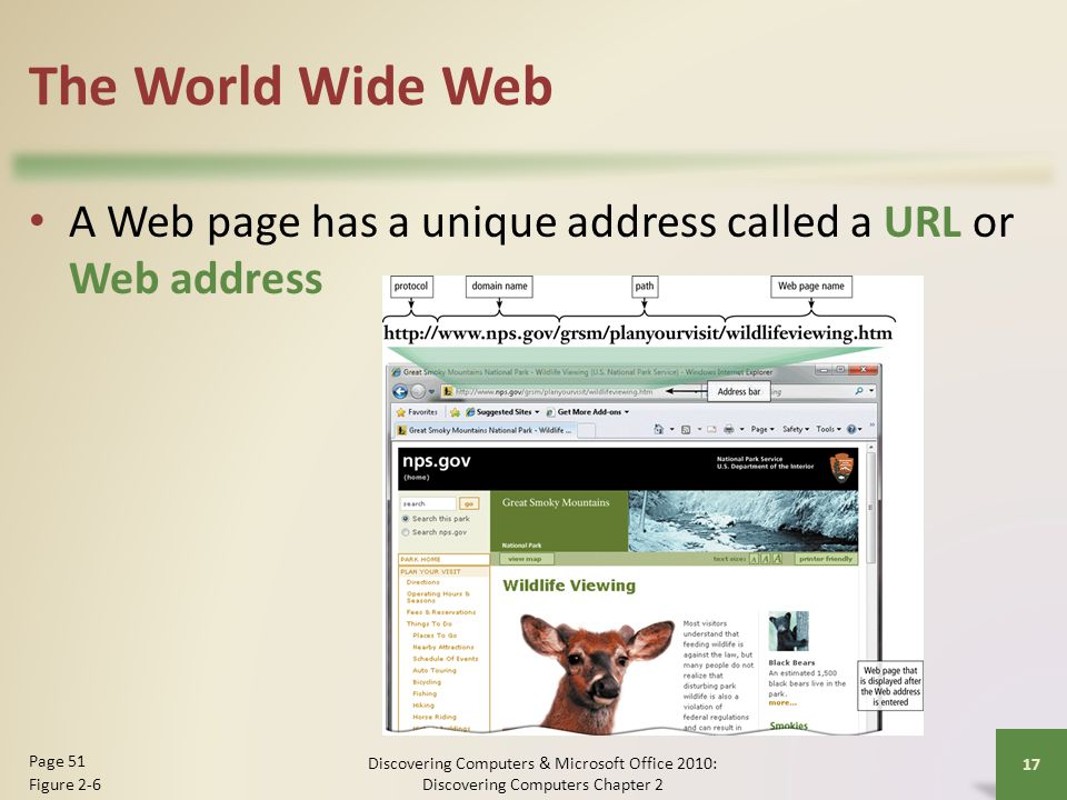 The World Wide Web A Web page has a unique address called a URL or Web address. Page 51. Figure 2-6.