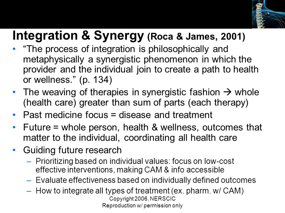 Integration & Synergy (Roca & James, 2001)
