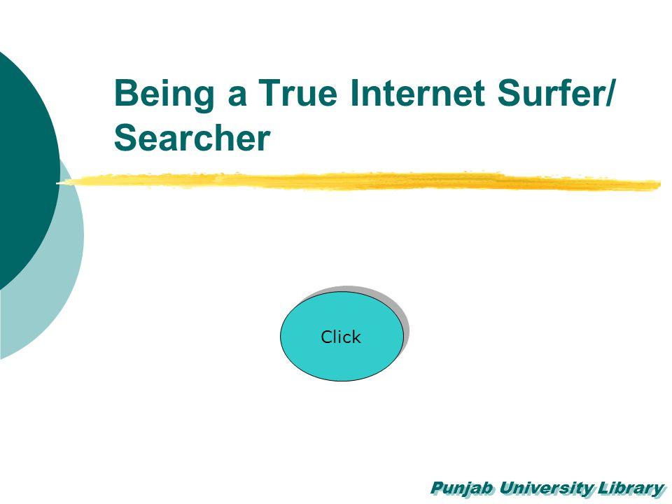 Being a True Internet Surfer/ Searcher