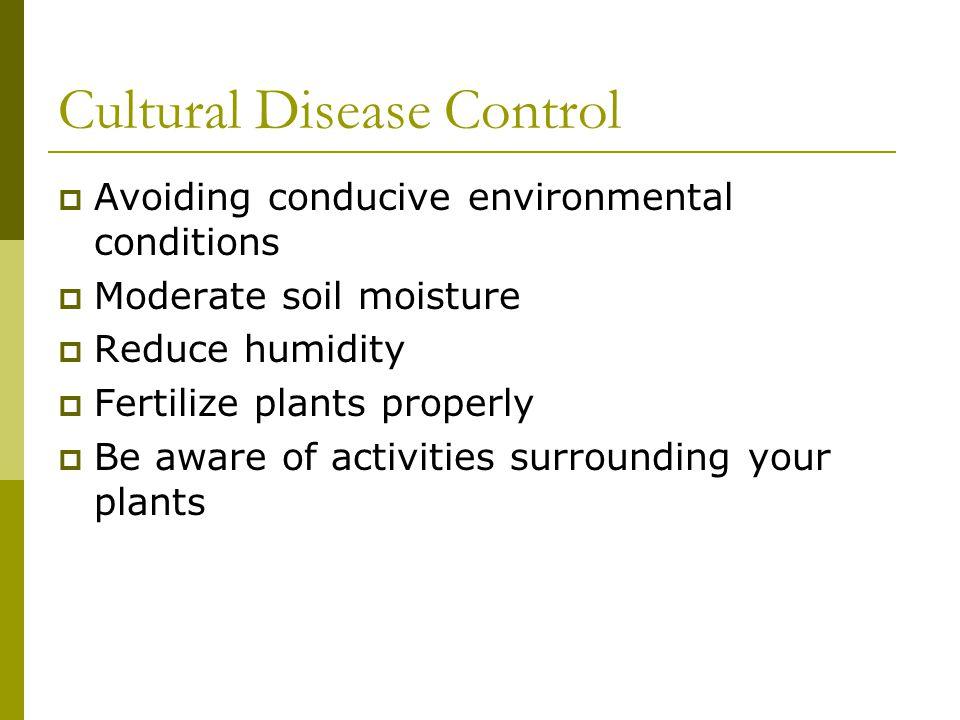 Cultural Disease Control