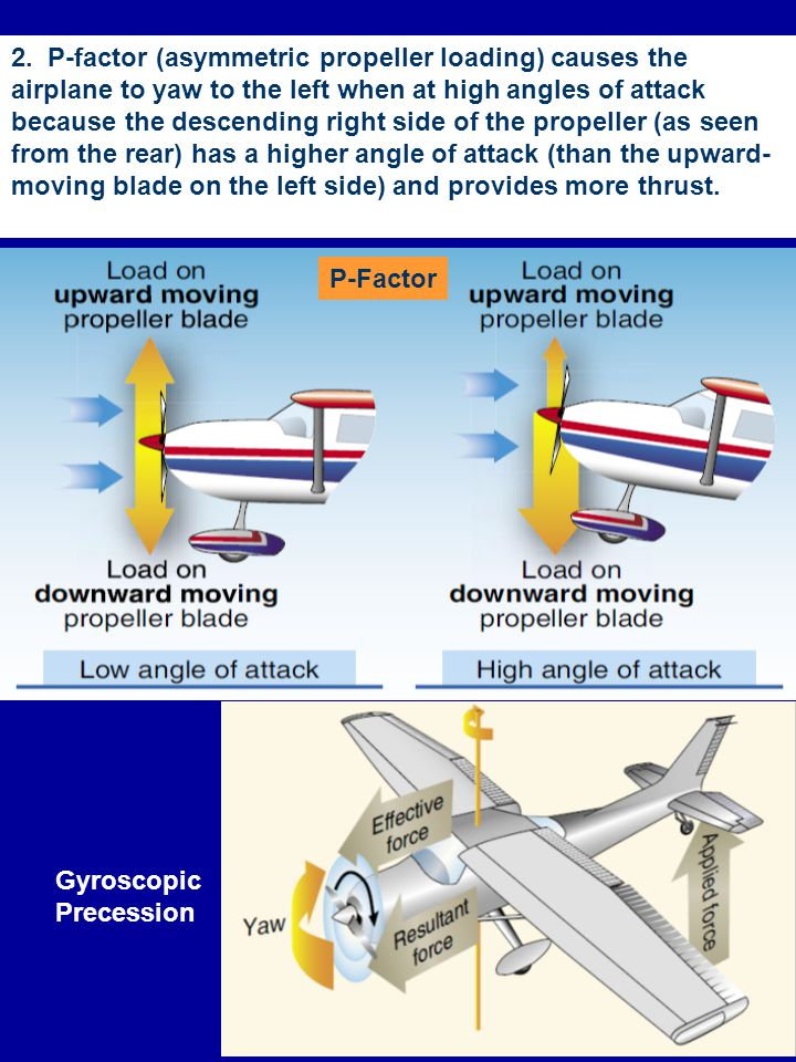 2. P-factor (asymmetric propeller loading) causes the airplane to yaw to the left when at high angles of attack because the descending right side of the propeller (as seen from the rear) has a higher angle of attack (than the upward-moving blade on the left side) and provides more thrust.
