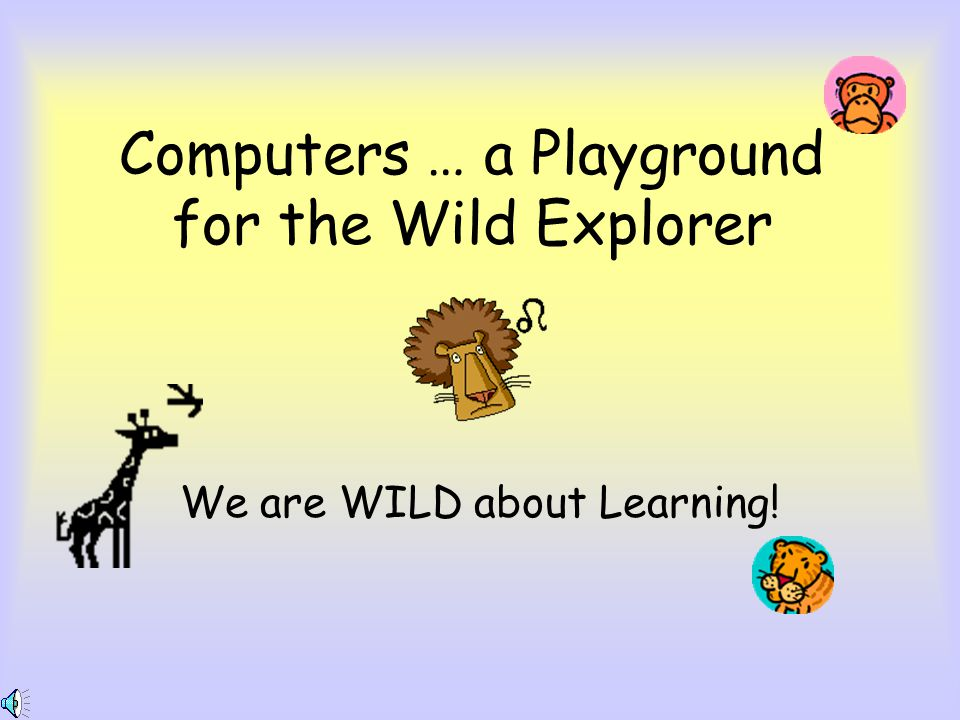 Computers … a Playground for the Wild Explorer