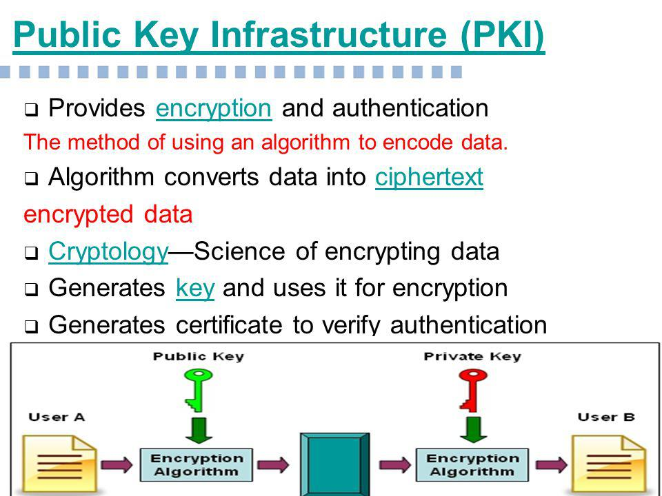 encryption and network security essay Network security - securing the computer network securing the computer network essay - whether a person is an occasional computer user encryption and access.