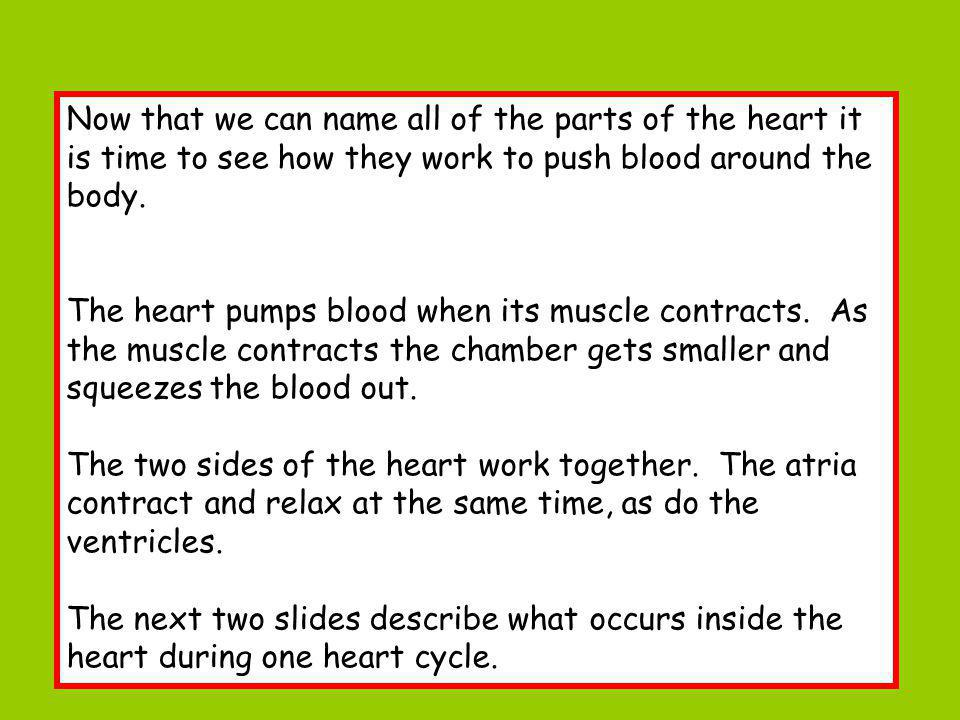 Now that we can name all of the parts of the heart it is time to see how they work to push blood around the body.