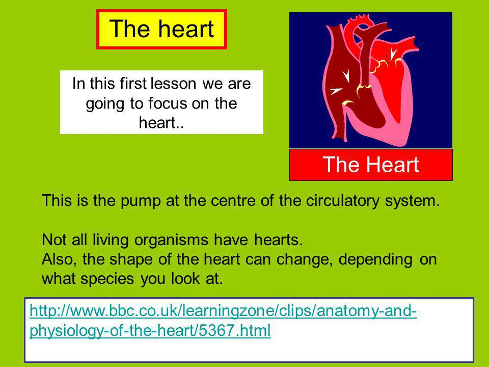 In this first lesson we are going to focus on the heart..