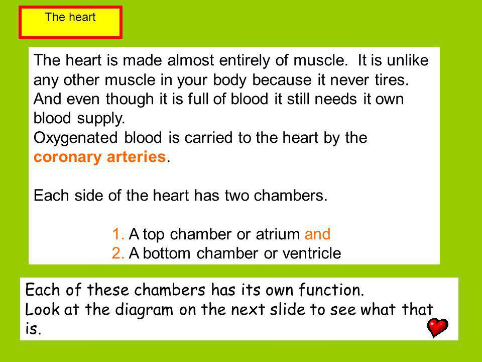 Oxygenated blood is carried to the heart by the coronary arteries.