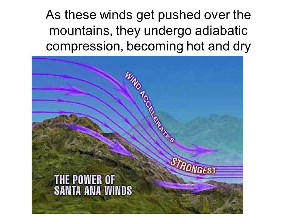 As these winds get pushed over the mountains, they undergo adiabatic compression, becoming hot and dry