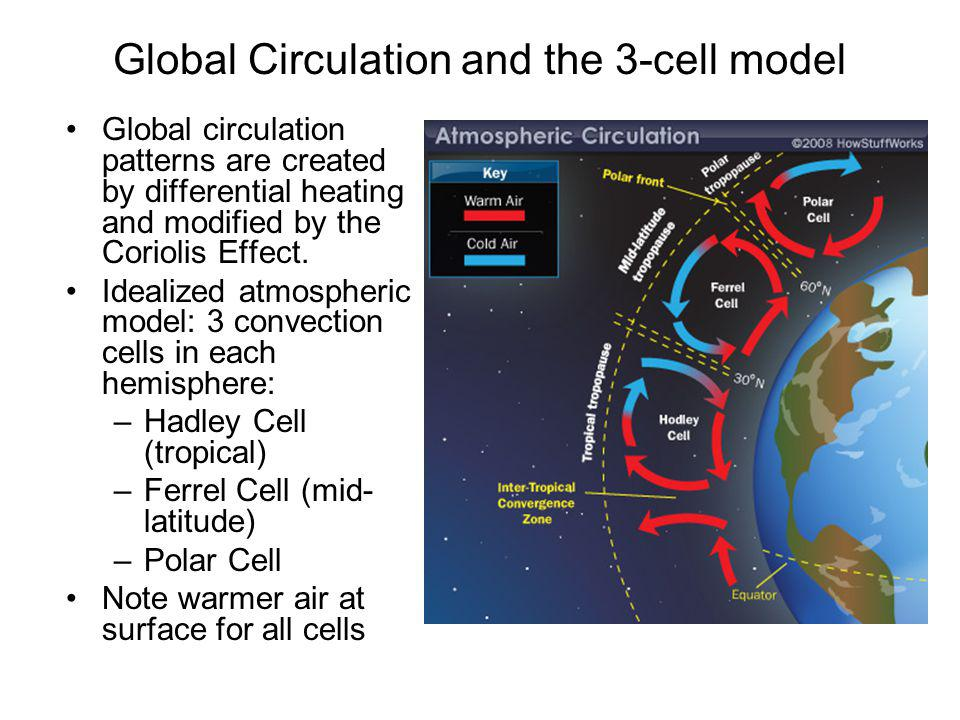 Global Circulation and the 3-cell model
