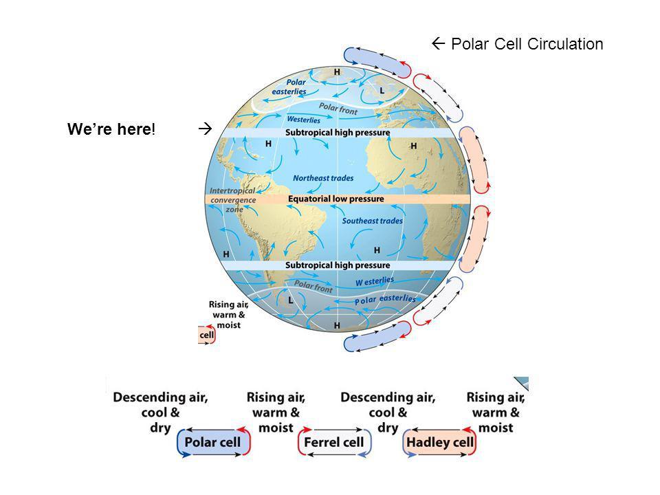  Polar Cell Circulation