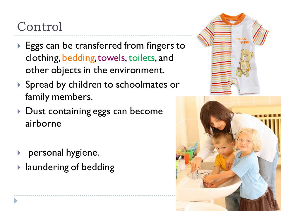 Control Eggs can be transferred from fingers to clothing, bedding, towels, toilets, and other objects in the environment.