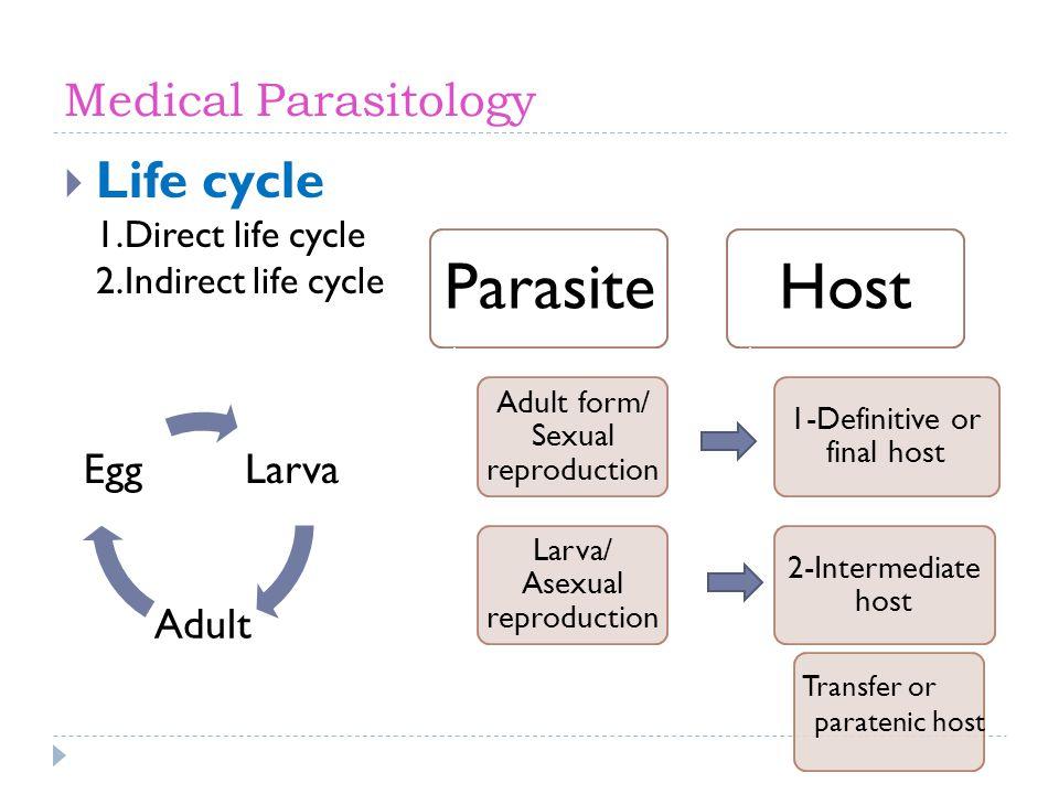 Life cycle 1.Direct life cycle 2.Indirect life cycle