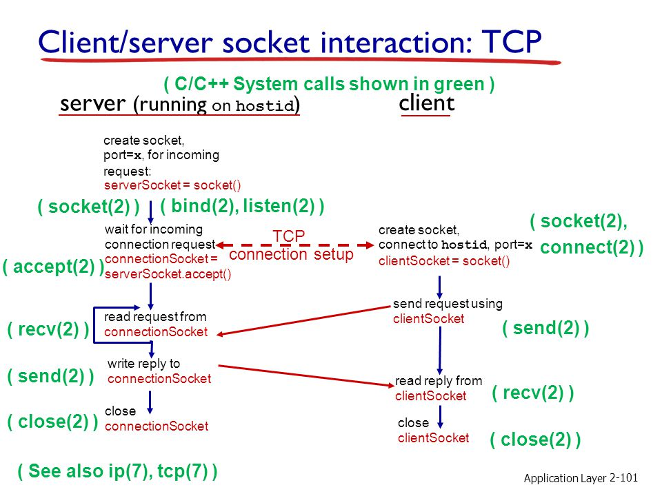 Client/server socket interaction: TCP
