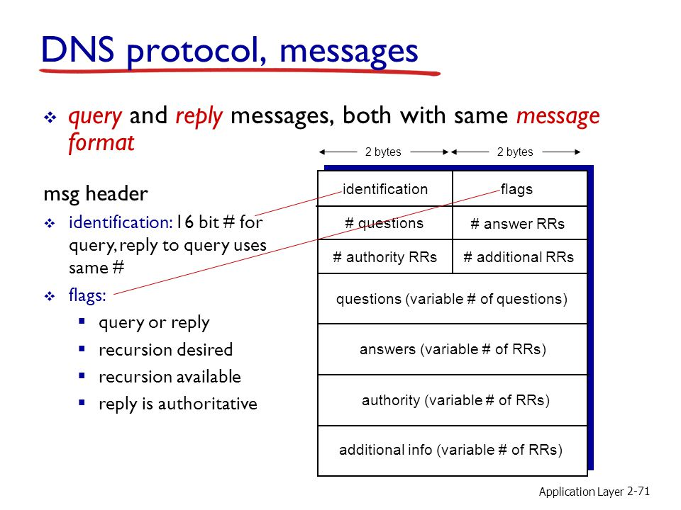 DNS protocol, messages query and reply messages, both with same message format. 2 bytes. 2 bytes.