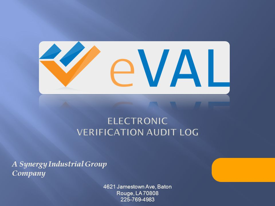 Electronic verification audit log