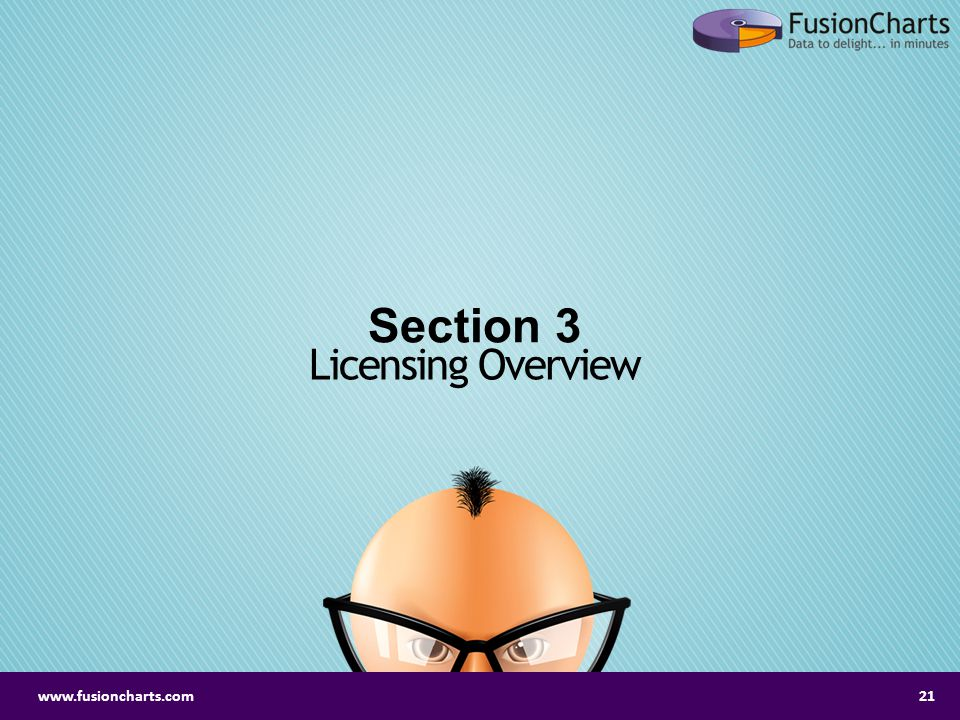 Section 3 Licensing Overview www.fusioncharts.com
