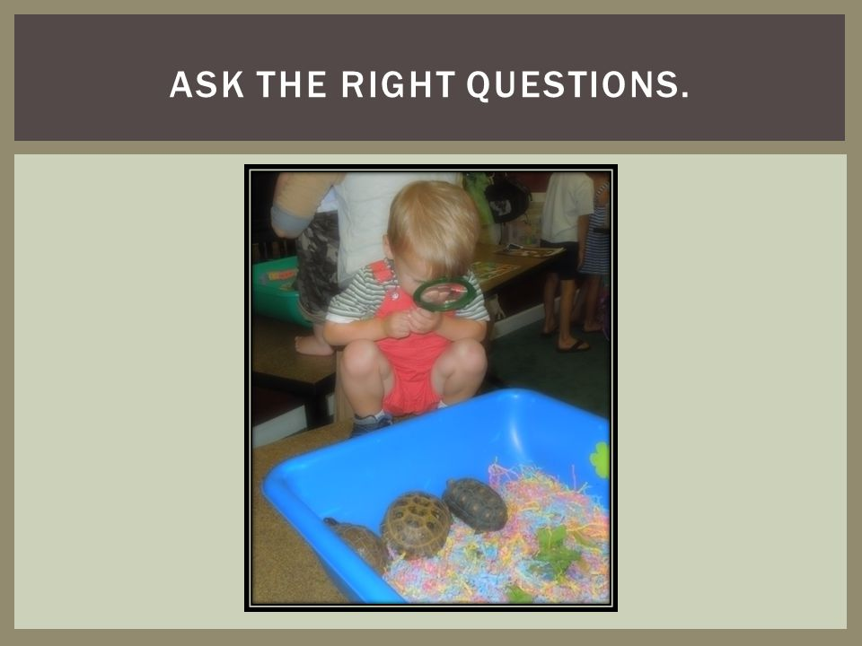 Ask the right questions.