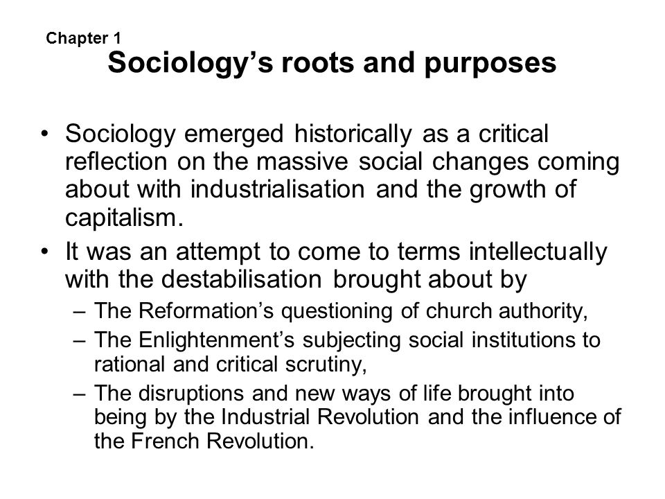 Sociology's roots and purposes