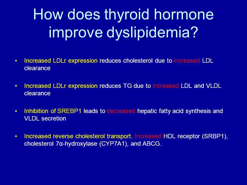 How does thyroid hormone improve dyslipidemia