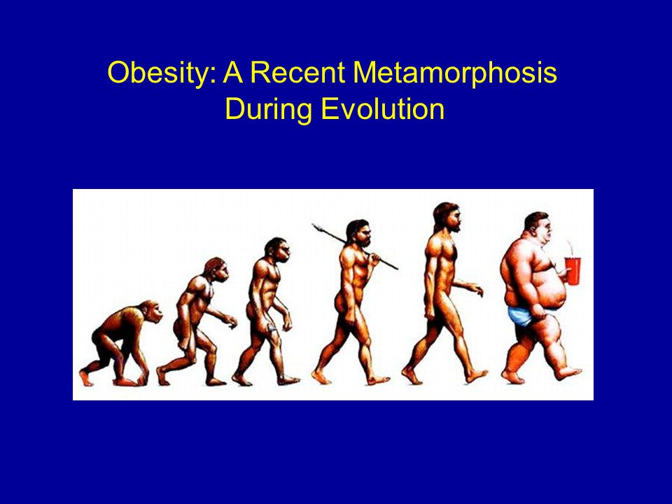 Obesity: A Recent Metamorphosis