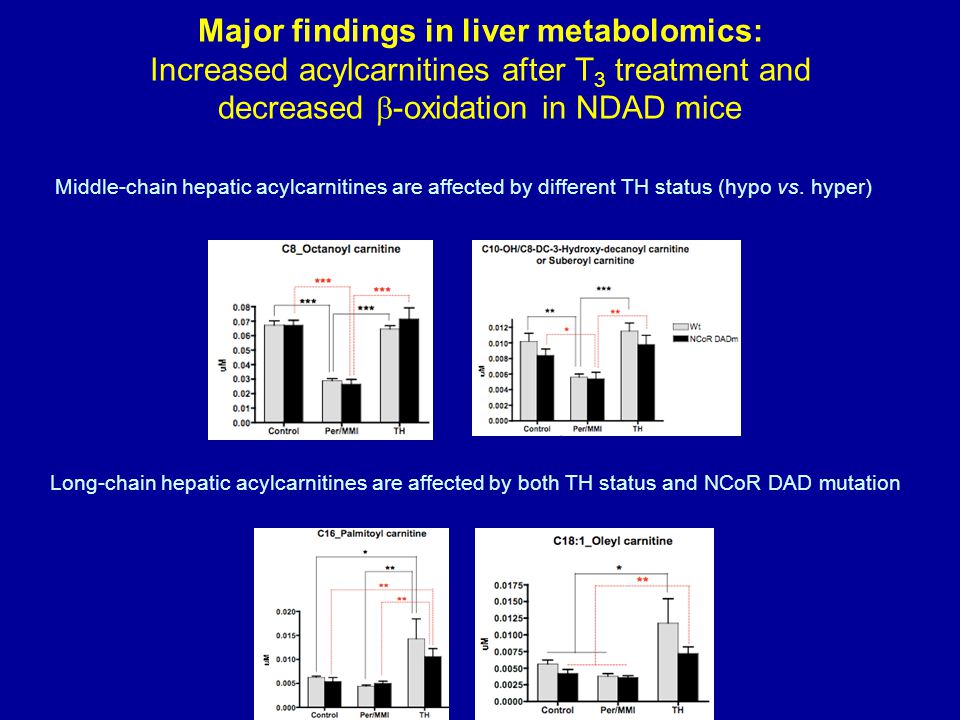 Major findings in liver metabolomics: Increased acylcarnitines after T3 treatment and decreased b-oxidation in NDAD mice