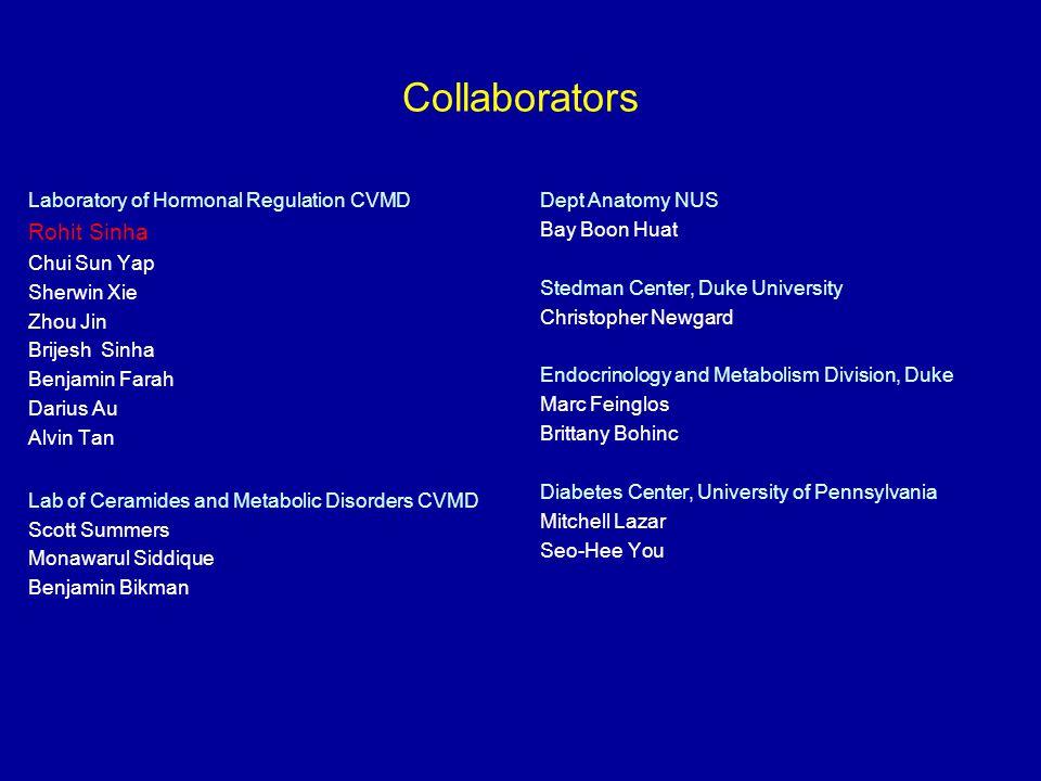 Collaborators Rohit Sinha Laboratory of Hormonal Regulation CVMD