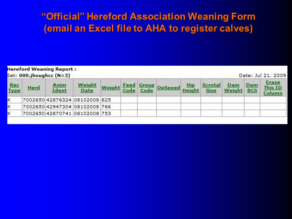 Official Hereford Association Weaning Form (email an Excel file to AHA to register calves)