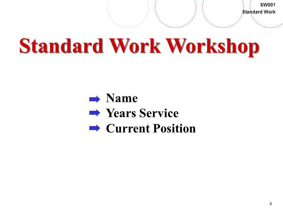 Standard Work Workshop