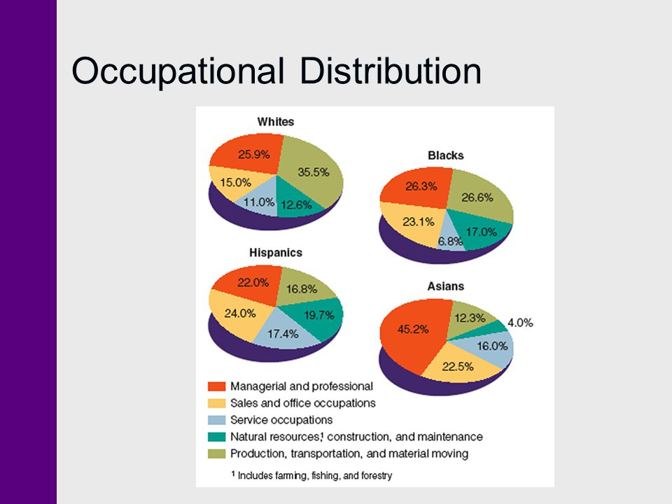 Occupational Distribution