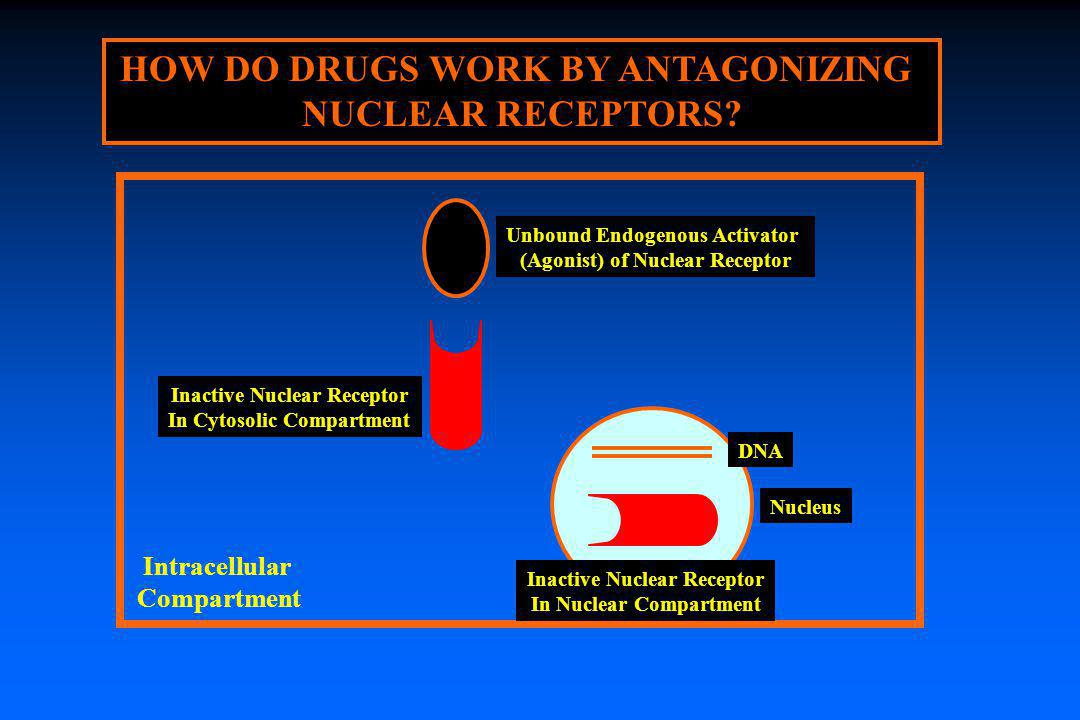HOW DO DRUGS WORK BY ANTAGONIZING NUCLEAR RECEPTORS