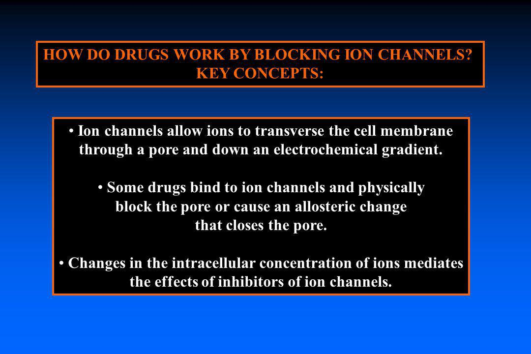 HOW DO DRUGS WORK BY BLOCKING ION CHANNELS KEY CONCEPTS: