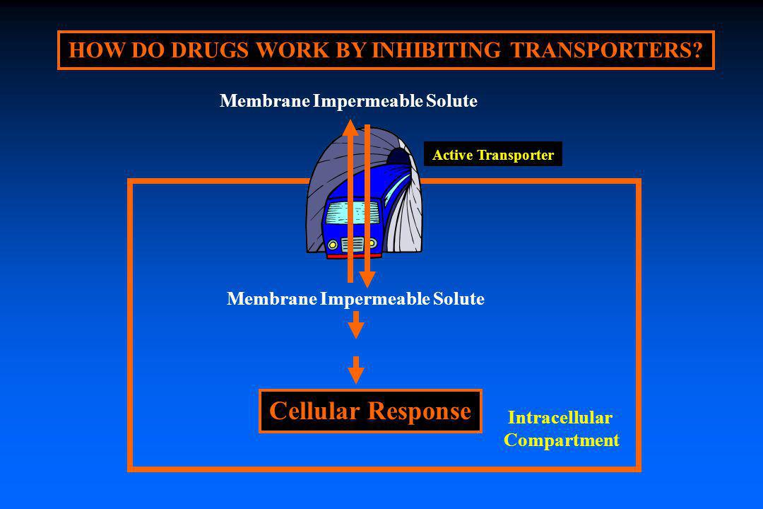 Cellular Response HOW DO DRUGS WORK BY INHIBITING TRANSPORTERS