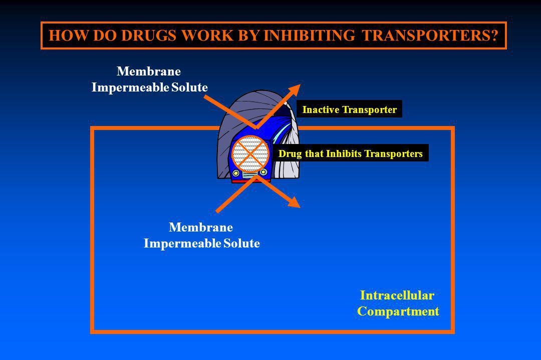 HOW DO DRUGS WORK BY INHIBITING TRANSPORTERS