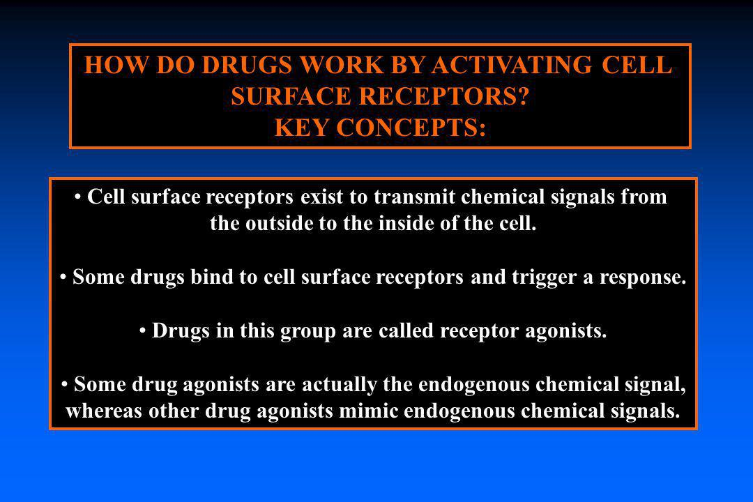 HOW DO DRUGS WORK BY ACTIVATING CELL SURFACE RECEPTORS KEY CONCEPTS: