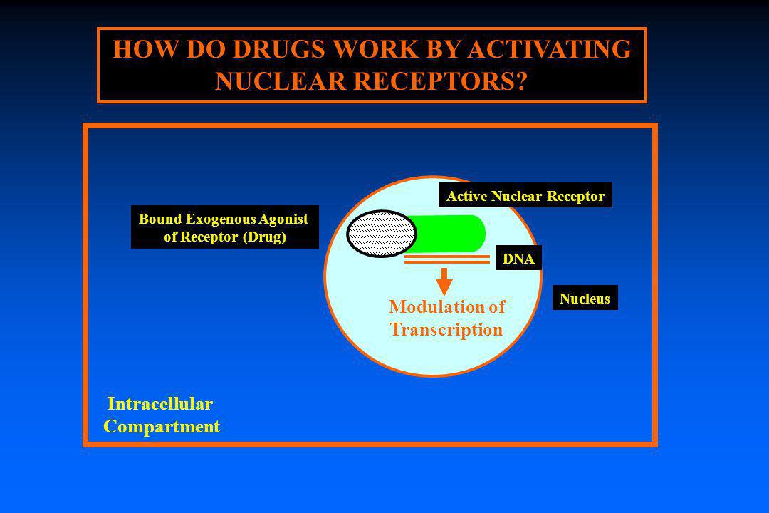 HOW DO DRUGS WORK BY ACTIVATING NUCLEAR RECEPTORS