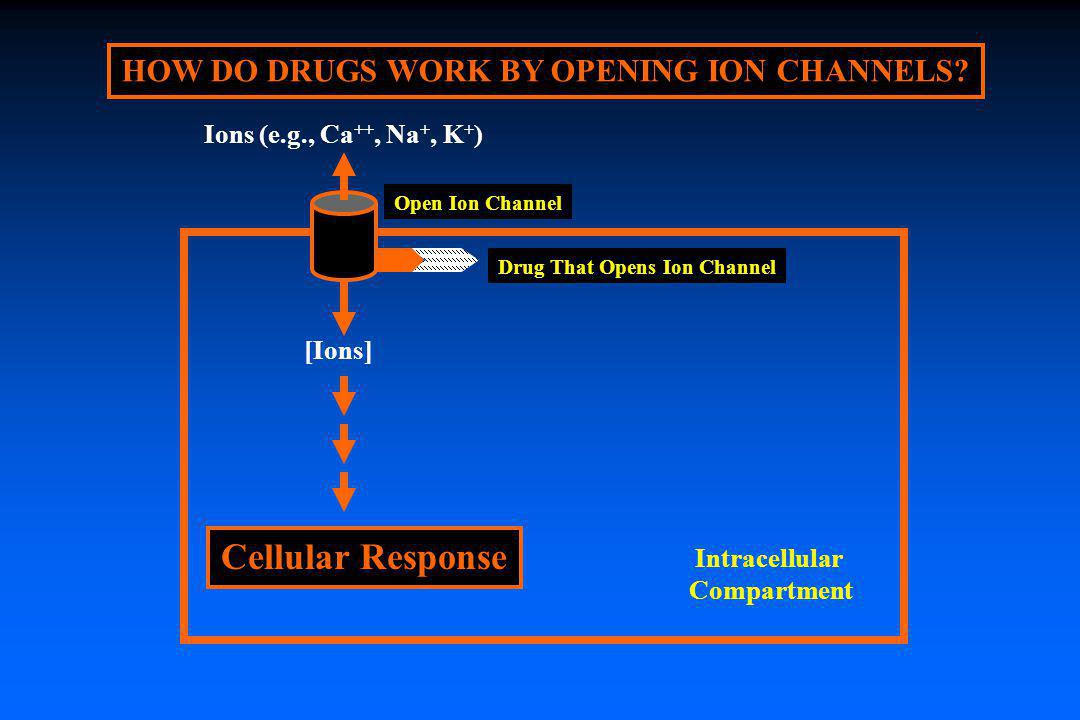 HOW DO DRUGS WORK BY OPENING ION CHANNELS Drug That Opens Ion Channel