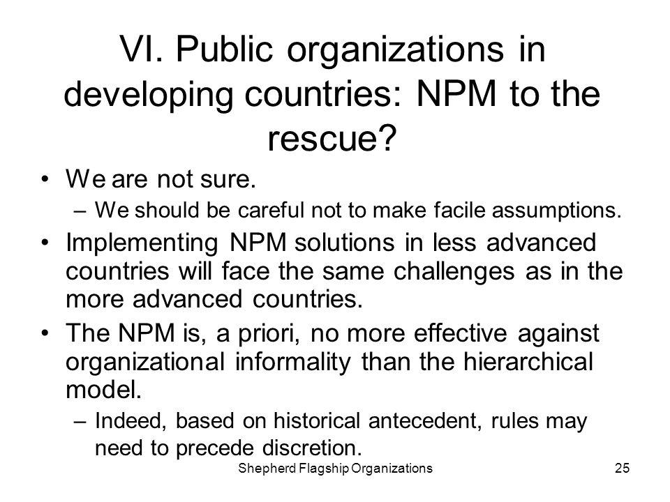 VI. Public organizations in developing countries: NPM to the rescue