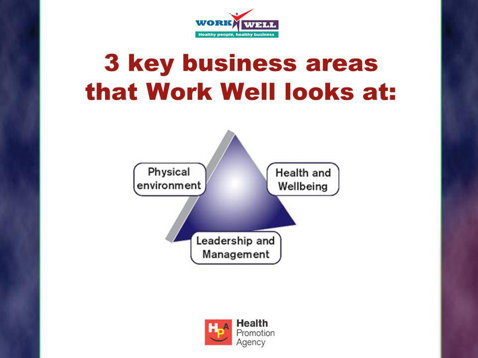 3 key business areas that Work Well looks at: