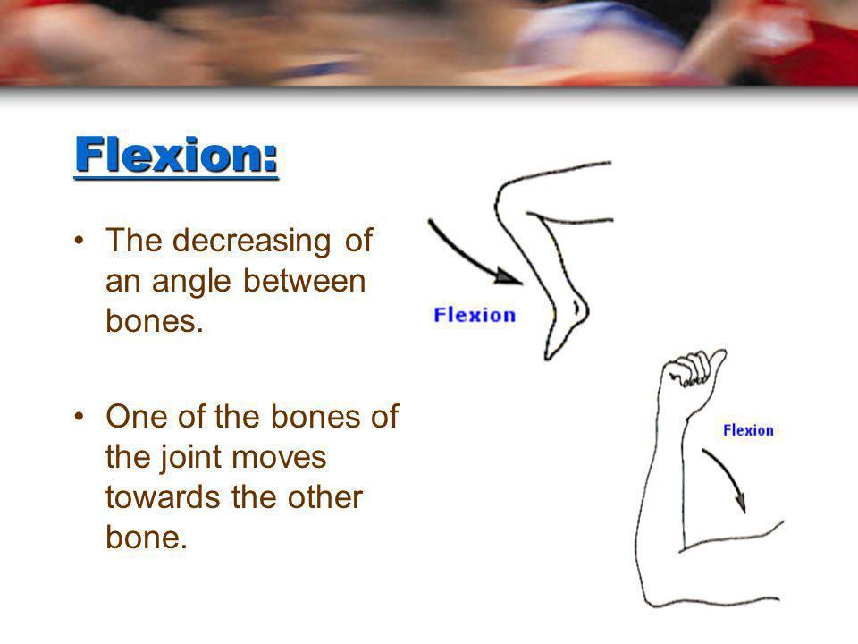 Flexion: The decreasing of an angle between bones.
