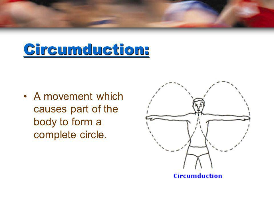 Circumduction: A movement which causes part of the body to form a complete circle.
