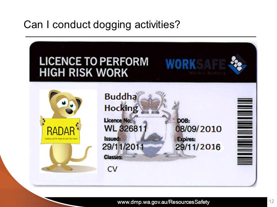 Can I conduct dogging activities