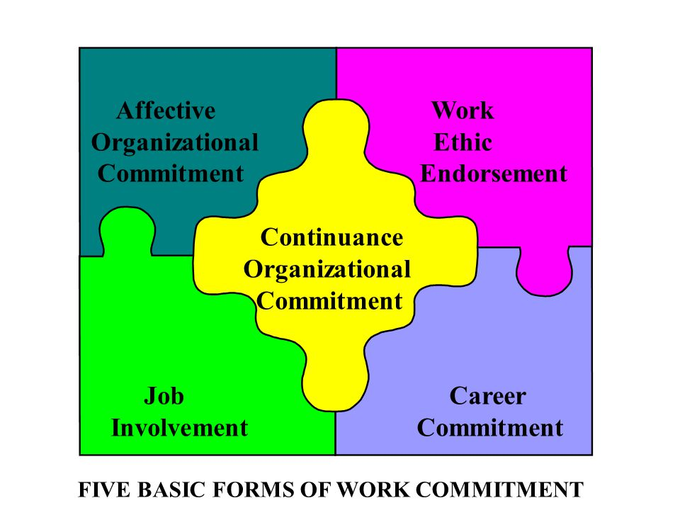 FIVE BASIC FORMS OF WORK COMMITMENT