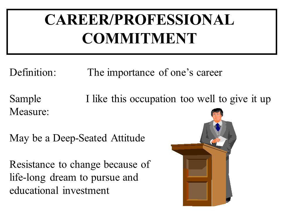 CAREER/PROFESSIONAL COMMITMENT