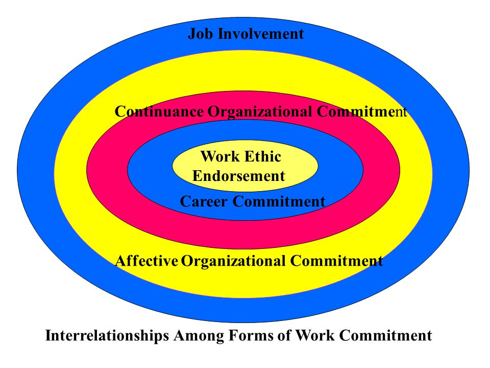 Job Involvement Continuance Organizational Commitment. Work Ethic. Endorsement. Career Commitment.