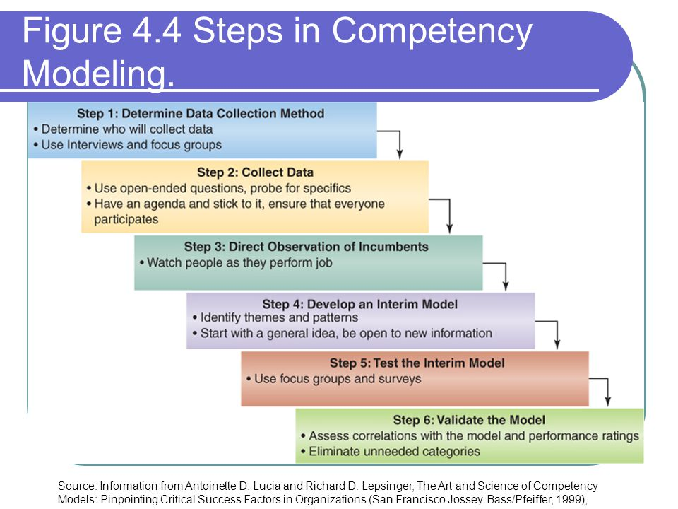 Figure 4.4 Steps in Competency Modeling.
