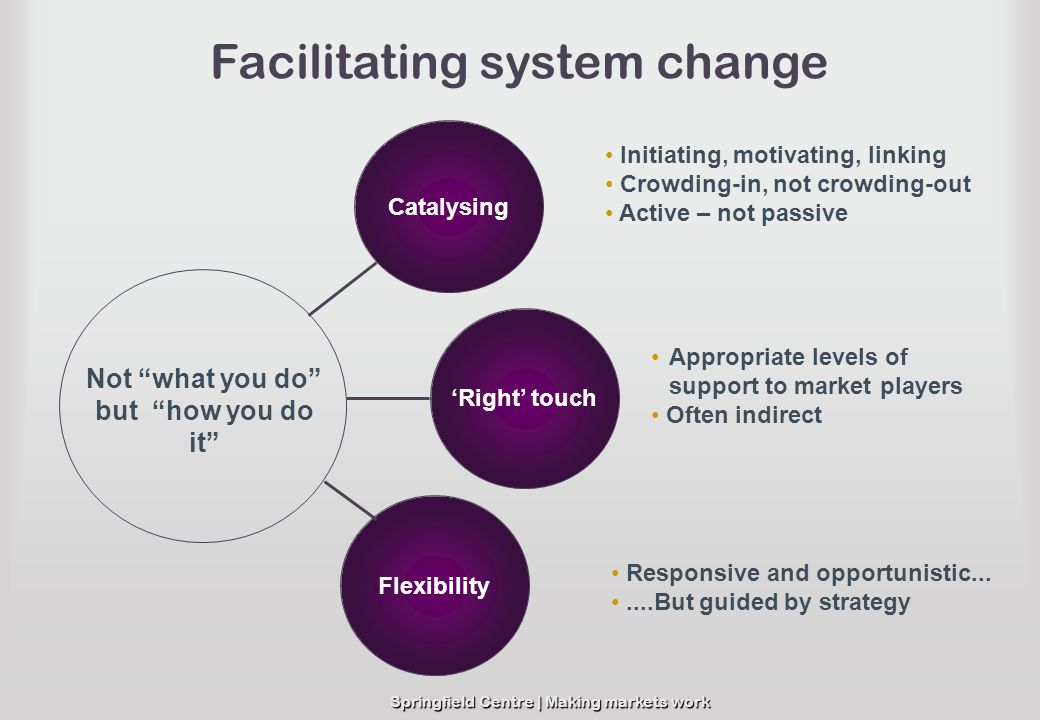 Facilitating system change