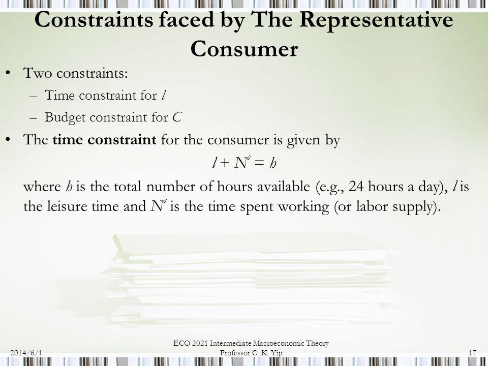 Constraints faced by The Representative Consumer