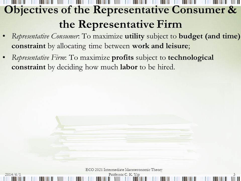 Objectives of the Representative Consumer & the Representative Firm