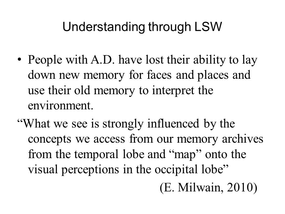 Understanding through LSW