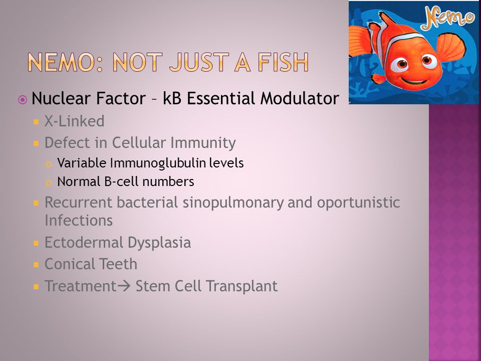 NemO: Not just a fish Nuclear Factor – kB Essential Modulator X-Linked