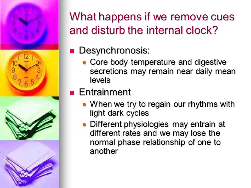 What happens if we remove cues and disturb the internal clock